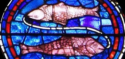 Poissons (vitrail de Chartres)
